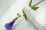 月桃の葉水だけで作られたネオナチュラルの月香物がたり